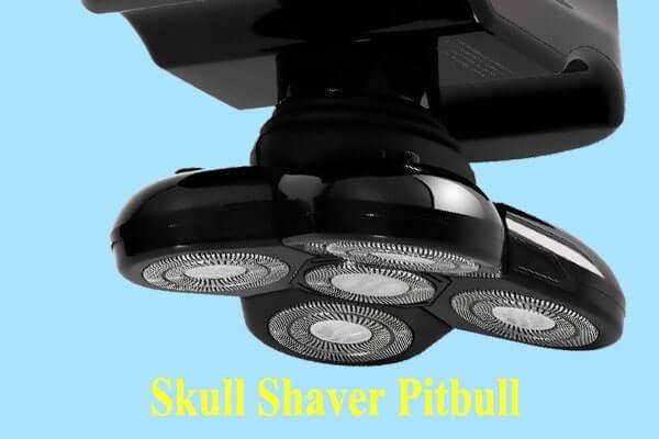 skull shaver pitbull